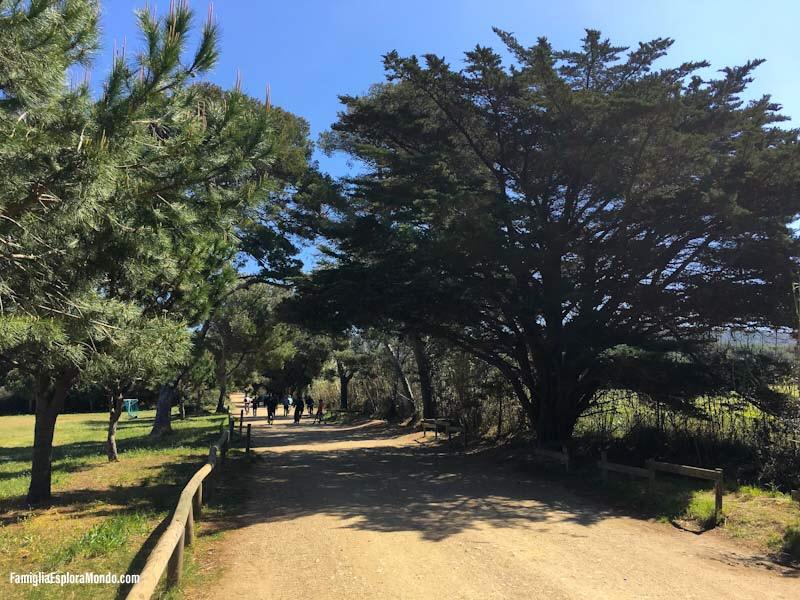 Il sentiero che porta alla plage de Notre Dame è ampio e pianeggiante