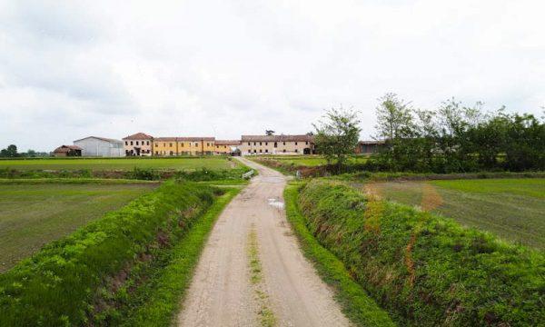 Risaia di Sant'Angelo Lomellina e Riseria di Villa Biscossi: la nostra giornata.