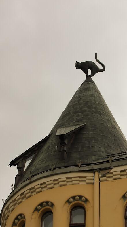 Il tetto a forma di cono della casa del gatto di riga, su cui troneggia un gatto nero con il posteriore rivolto verso la camera di commercio