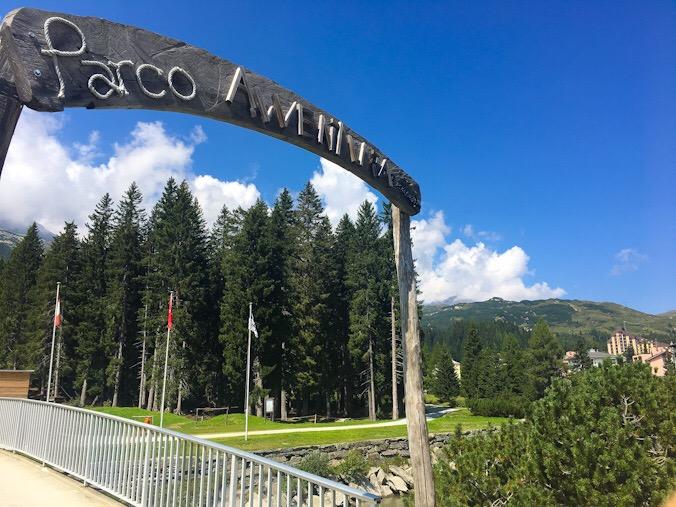 Parco avventura svizzera