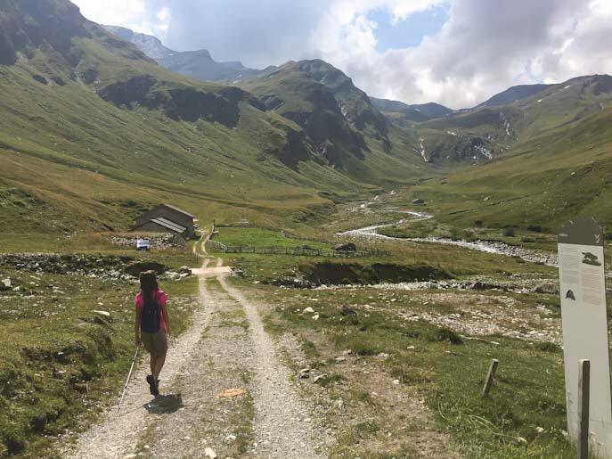Cartelli esplicativi sul sentiero delle marmotte in svizzera