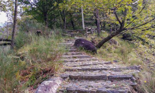 Monteviasco: trekking autunnale e castagne
