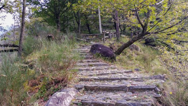 Sentiero a gradini per Monteviasco