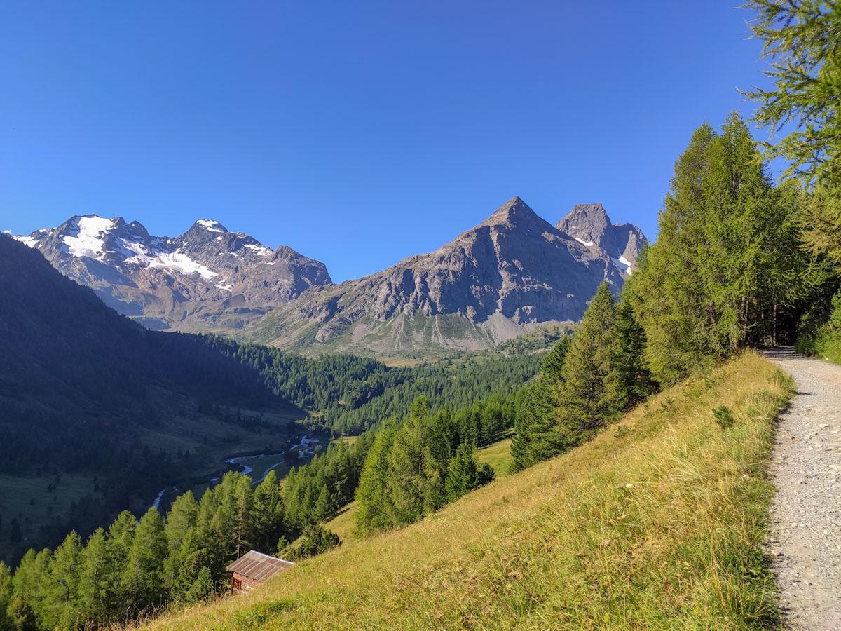 Sentiero verso il rifugio Val Viola
