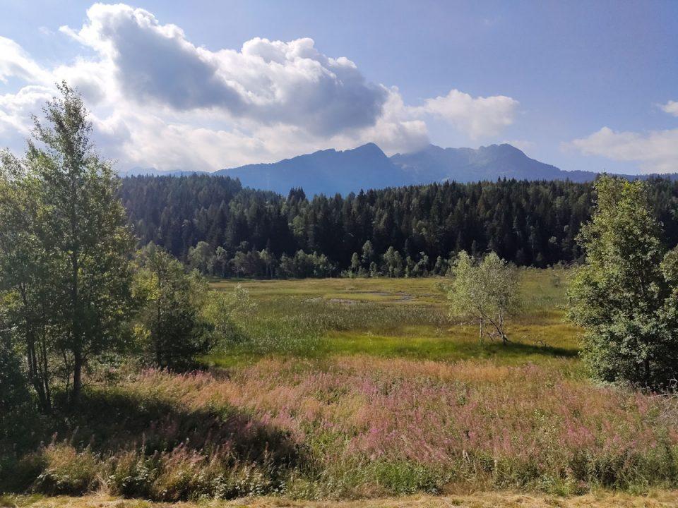 Panorama Pian di Gembro con vista sui monti e sulla torbiera