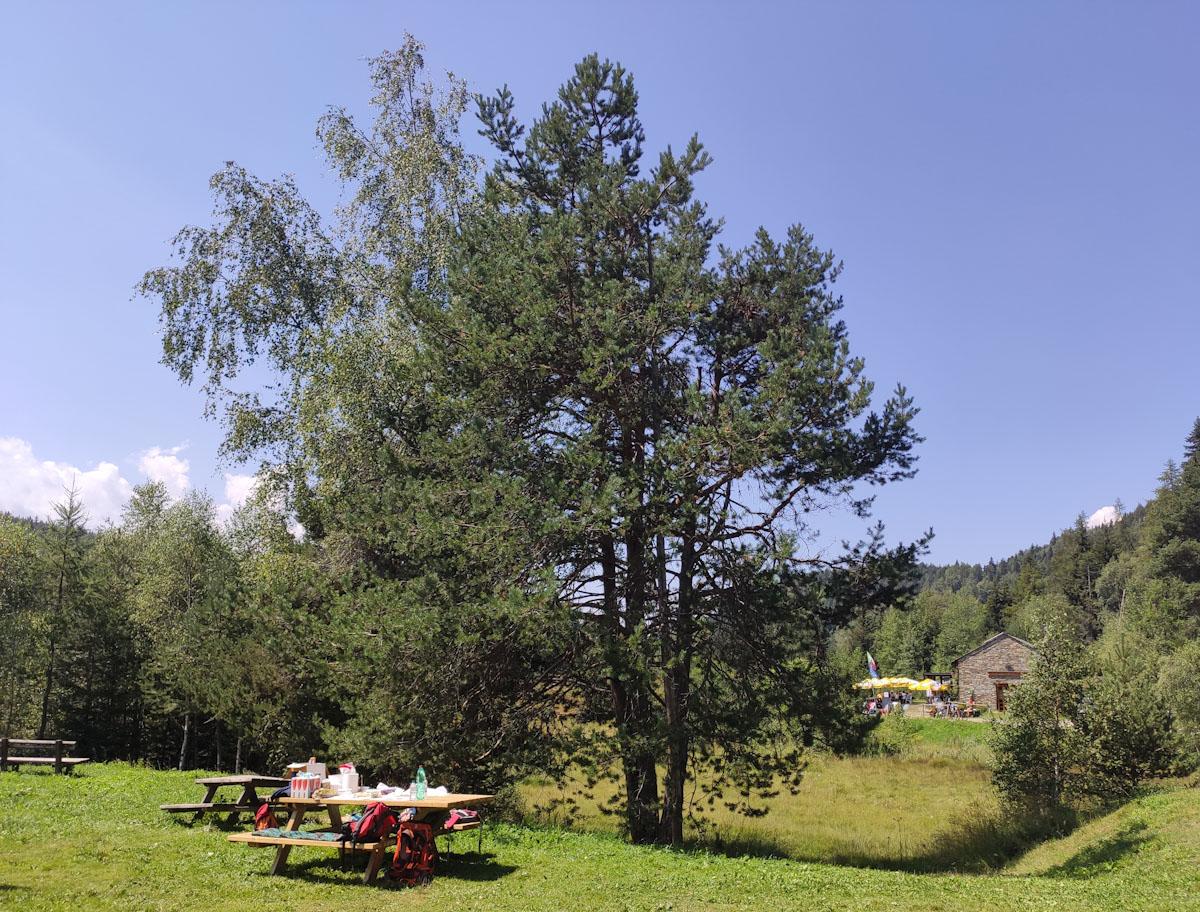 Area picnic e Ristoro Pian di Gembro