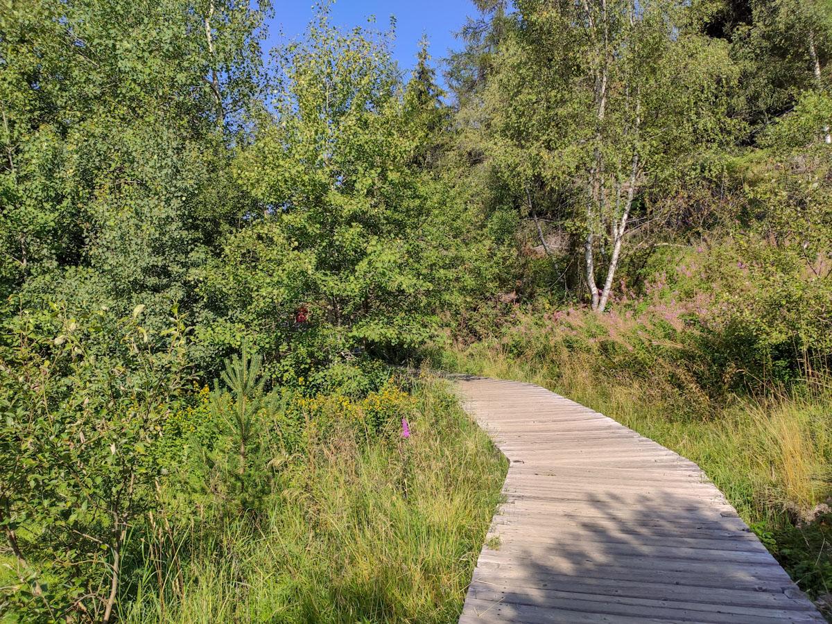 Passerella in legno lungo il sentiero di Pian di Gembro