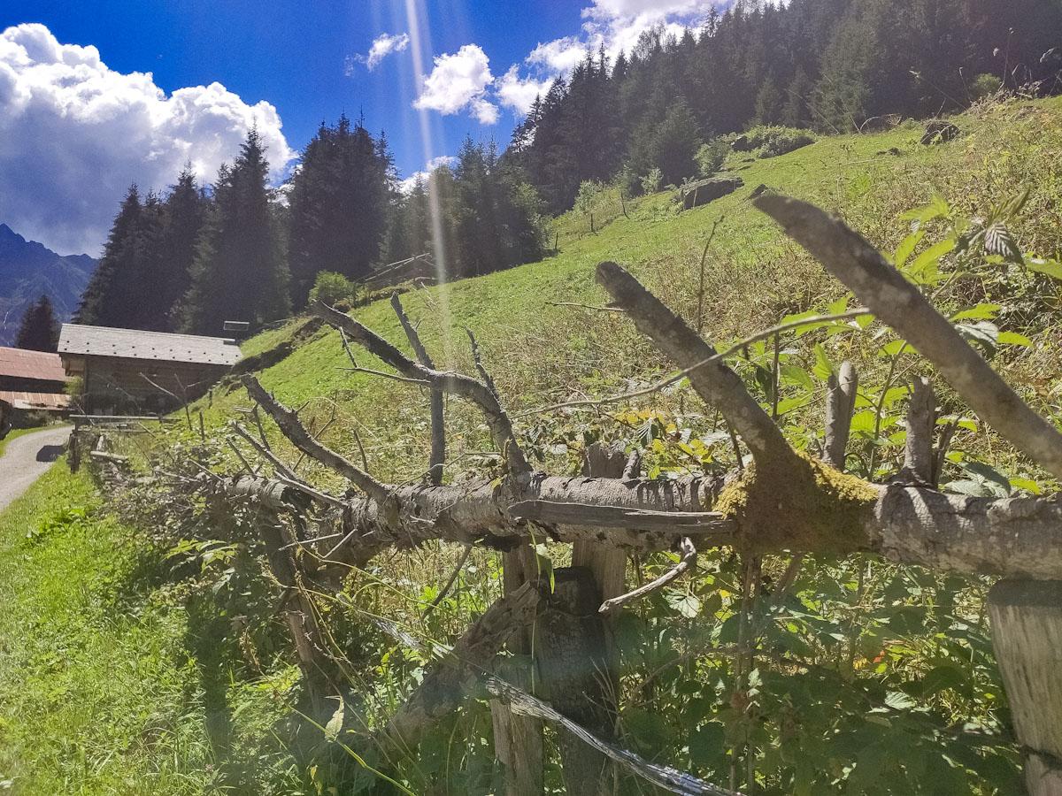 Una seze, tipica recinzione visibile nel giro delle Valli di Sant'Antonio