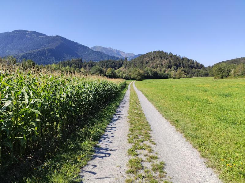 Sentiero da Bonaduz a Wackenau