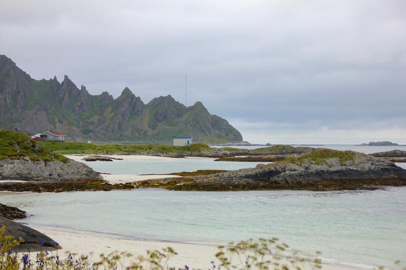 Andenes punto di partenza per il whale watching alle Isole Lofoten