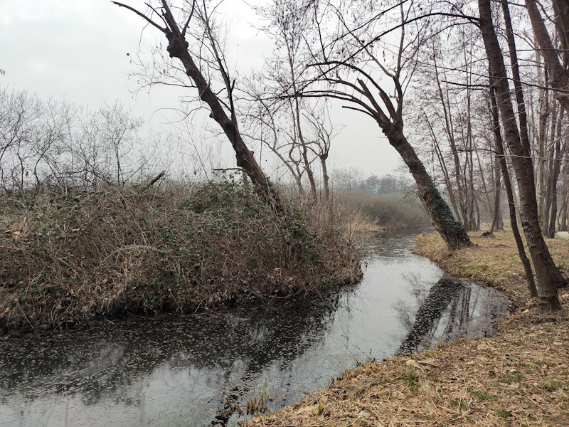 Oasi naturale Riserva del Lago di Sartirana