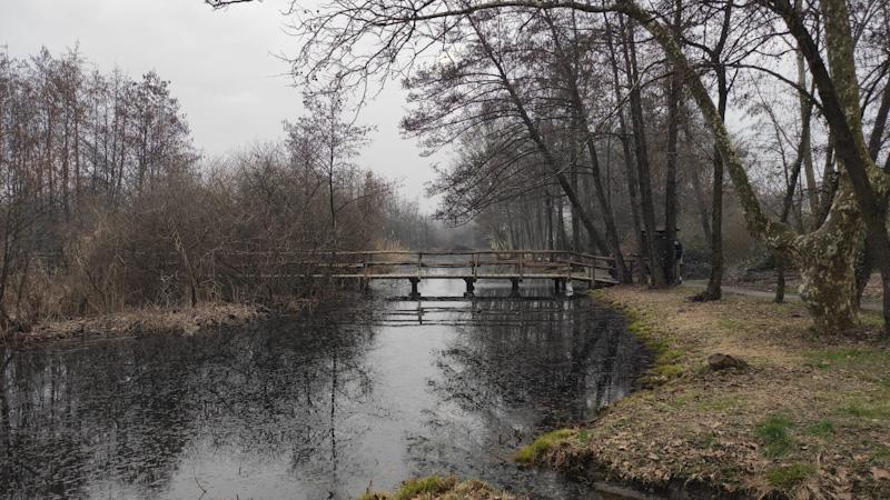 Riserva Naturale Lago di Sartirana