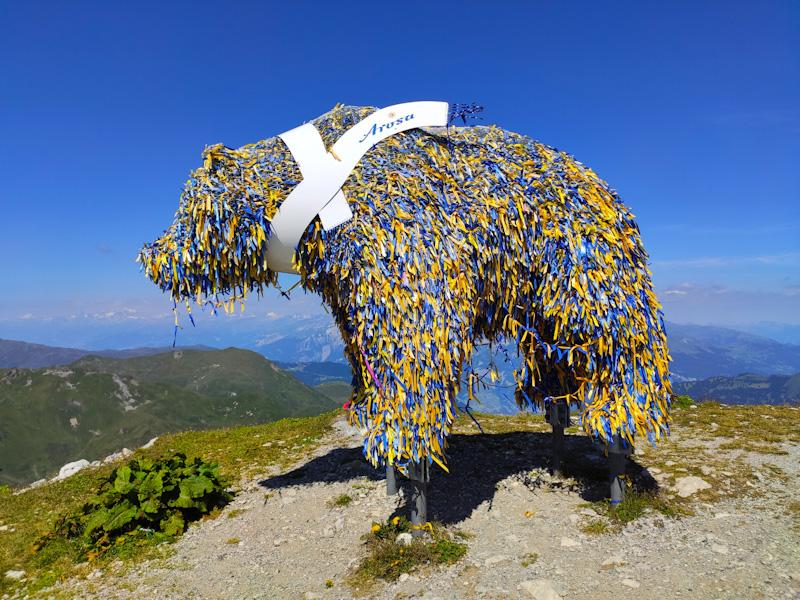 Orso in cima al Weisshorn